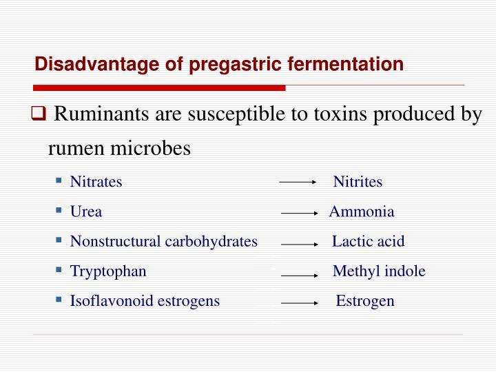 Disadvantage of pregastric fermentation