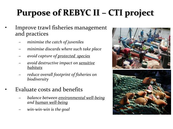 Purpose of REBYC II – CTI project