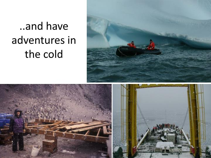 ..and have adventures in the cold