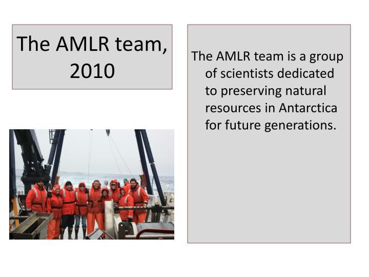 The AMLR team