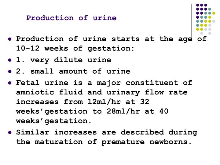 Production of urine
