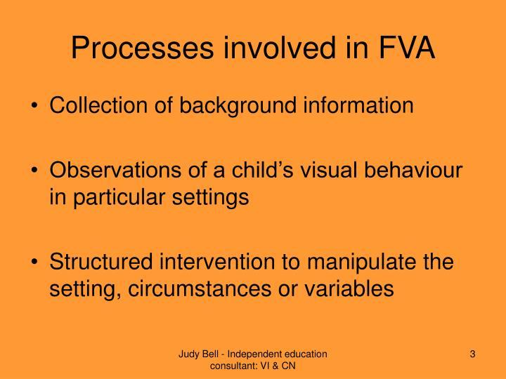 Processes involved in FVA