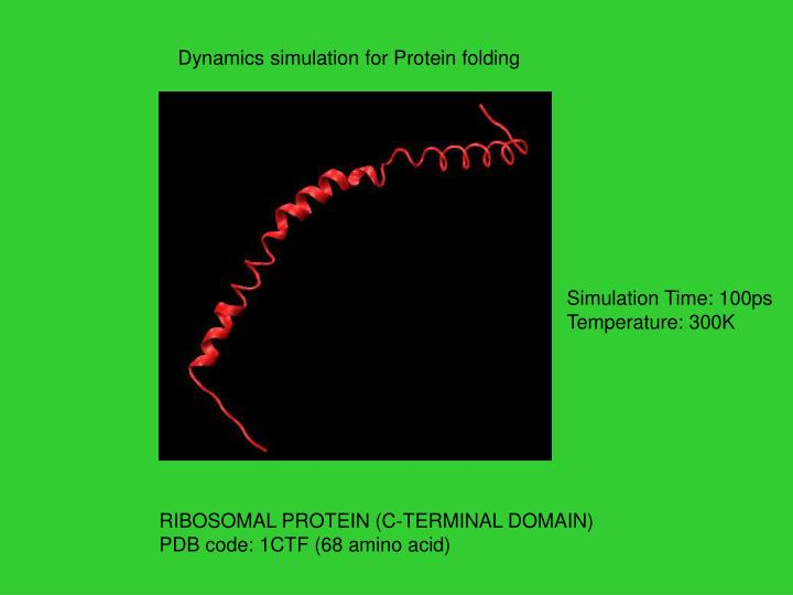 Dynamics simulation for Protein folding