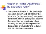 hopper on what determines the exchange rate5