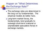 hopper on what determines the exchange rate6