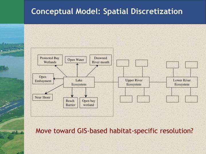 Conceptual Model: Spatial Discretization