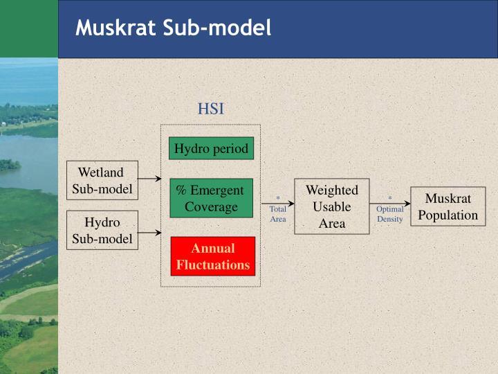 Muskrat Sub-model