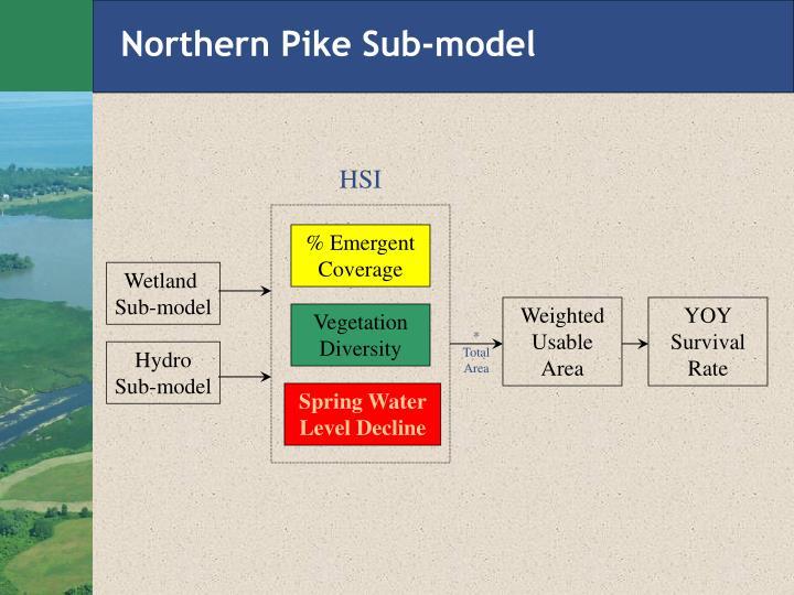 Northern Pike Sub-model