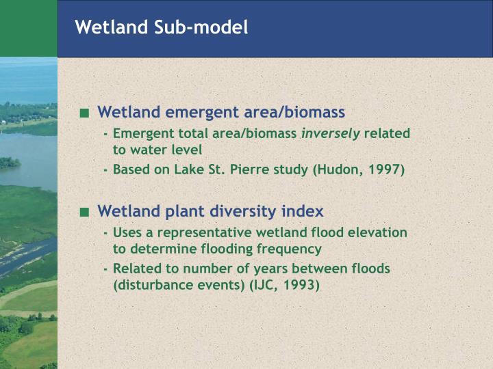 Wetland Sub-model