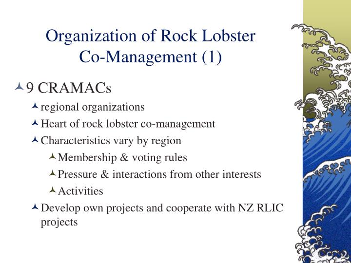 Organization of Rock Lobster          Co-Management (1)