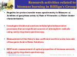 research activities related to biomass burning in bililign s group
