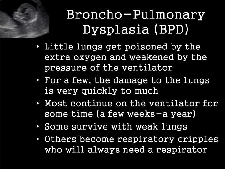 Broncho-Pulmonary Dysplasia (BPD)