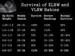 survival of elbw and vlbw babies