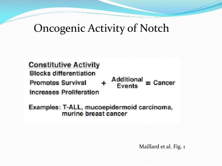 Oncogenic Activity of Notch