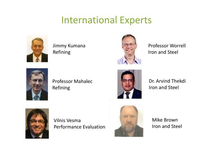 International Experts