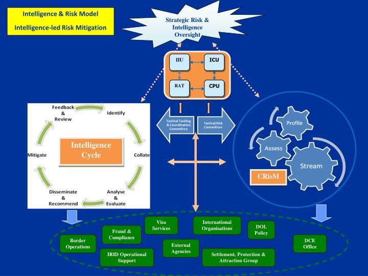Strategic Risk & Intelligence Oversight