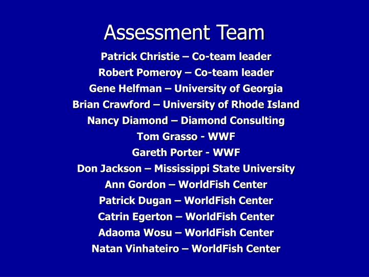 Assessment Team