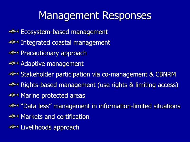 Management Responses