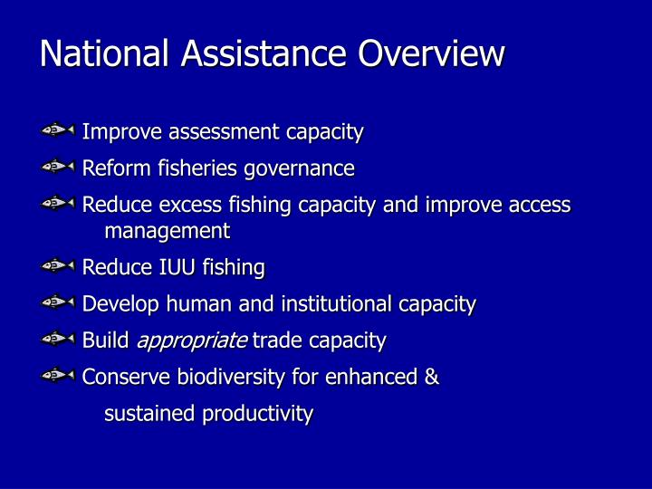 National Assistance Overview