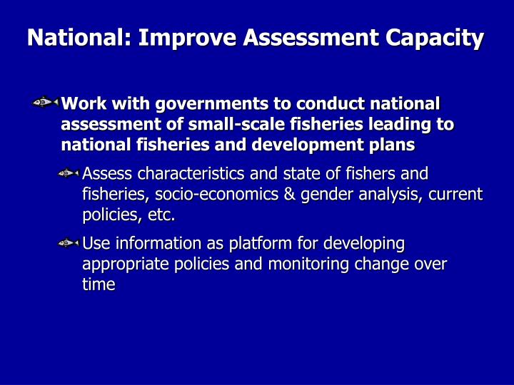 National: Improve Assessment Capacity