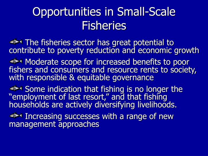 Opportunities in Small-Scale Fisheries