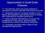 opportunities in small scale fisheries