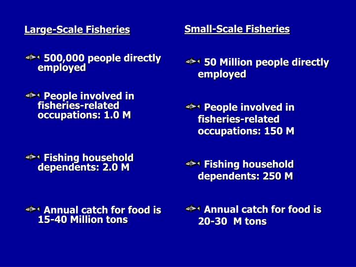 Large-Scale Fisheries
