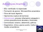 actinomyces arachnia