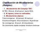 clasificaci n de micobacterias runyon