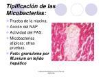 tipificaci n de las micobacterias