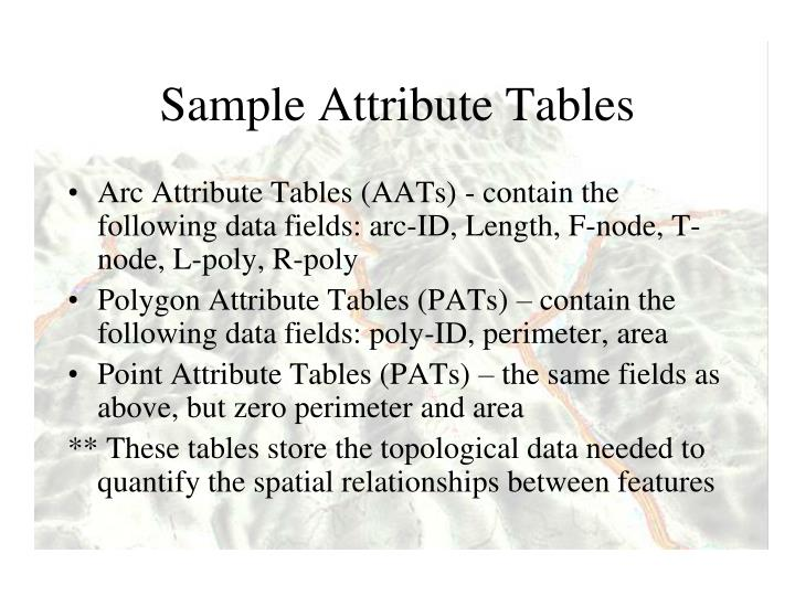 Sample Attribute Tables