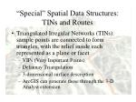 special spatial data structures tins and routes