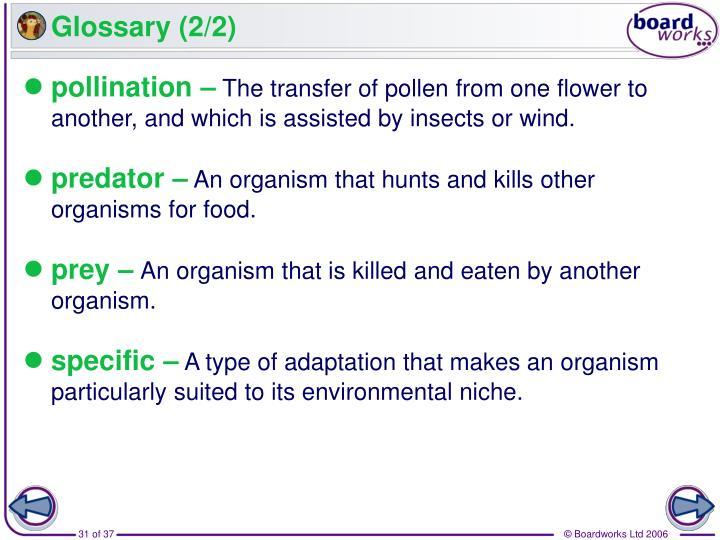 Glossary (2/2)