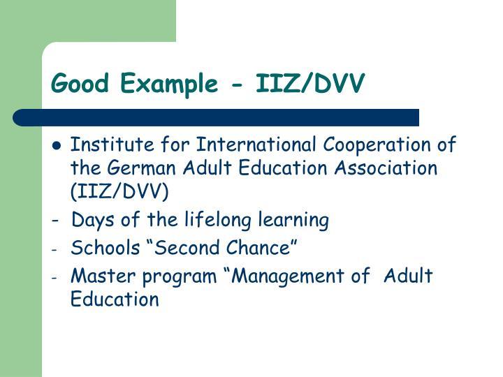 Good Example - IIZ/DVV