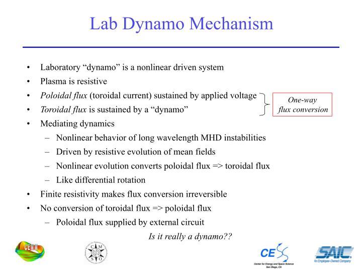 Lab Dynamo Mechanism