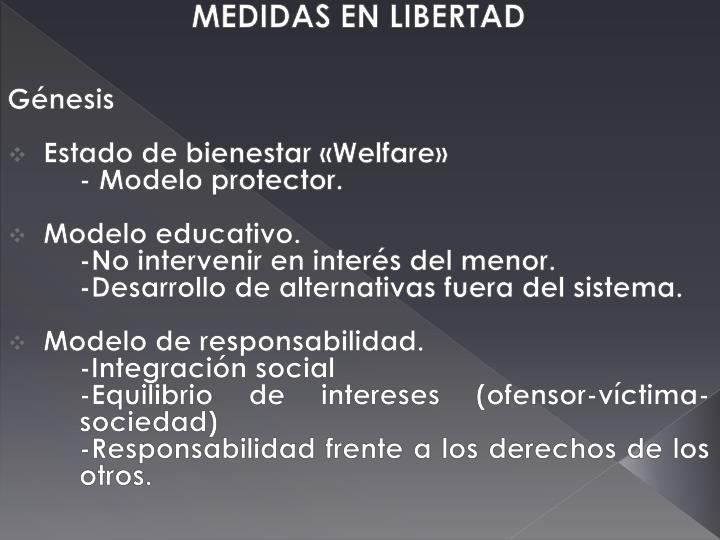 MEDIDAS EN LIBERTAD