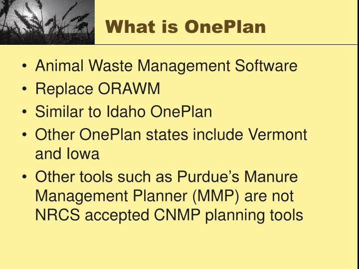What is OnePlan