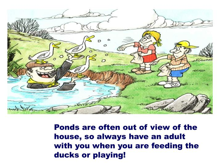 Ponds are often out of view of the house, so always have an adult with you when you are feeding the ducks or playing!