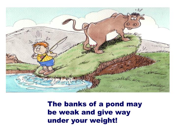 The banks of a pond may be weak and give way under your weight!