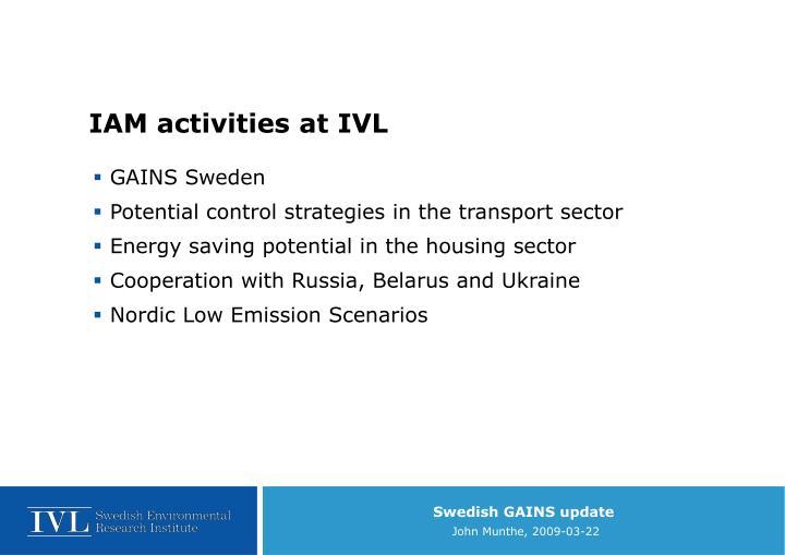 IAM activities at IVL