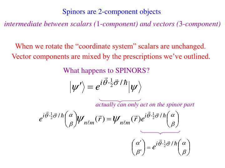 Spinors are 2-component objects
