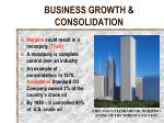 business growth consolidation