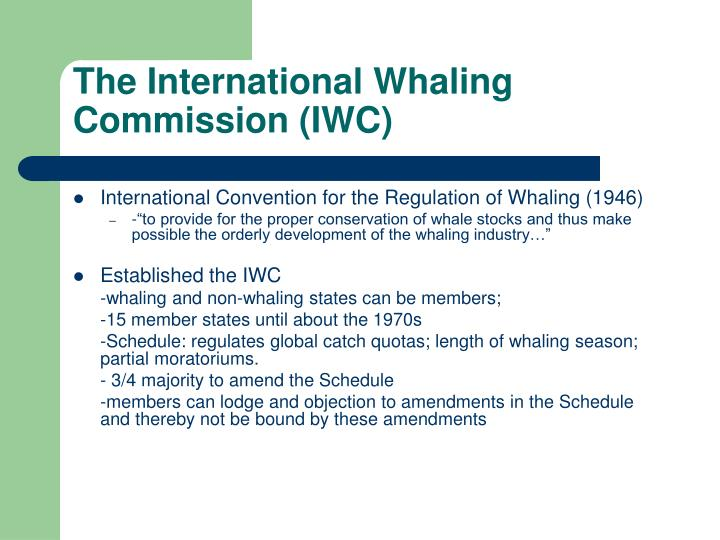The International Whaling Commission (IWC)