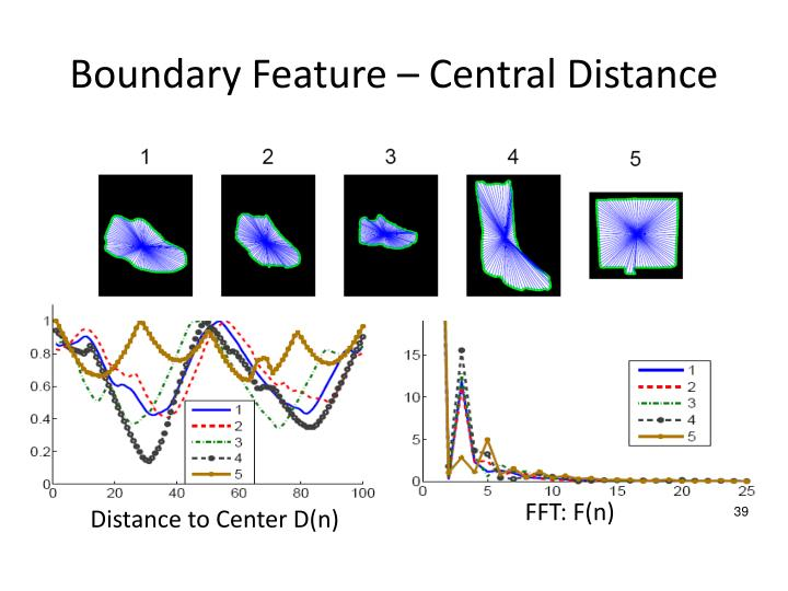 Boundary Feature – Central Distance