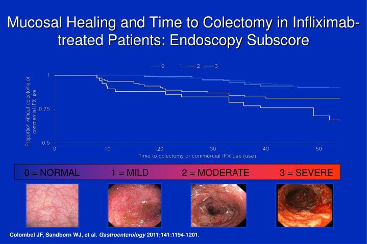 Mucosal Healing and Time to Colectomy in Infliximab-treated Patients: Endoscopy