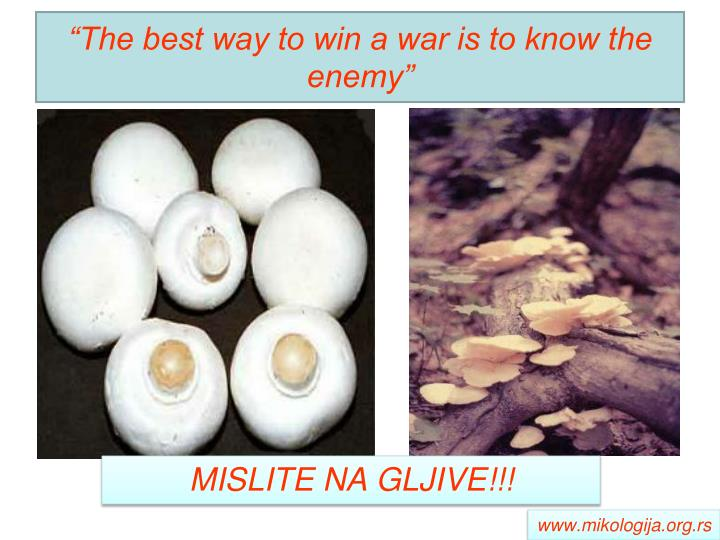 """""""The best way to win a war is to know the enemy"""""""