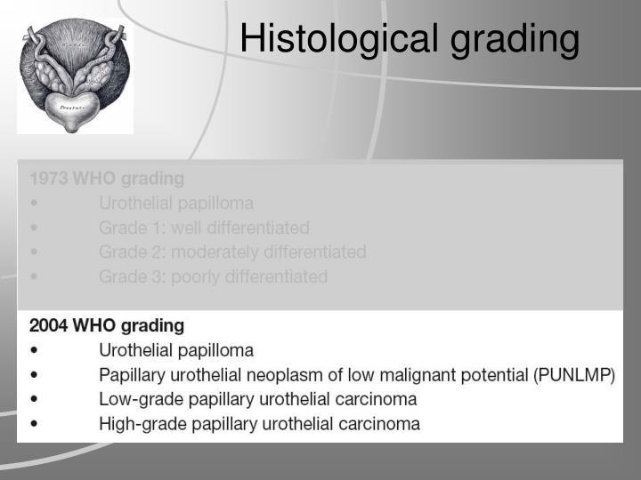 Histological grading