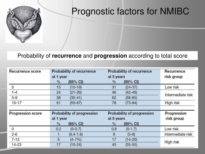 Prognostic factors for NMIBC