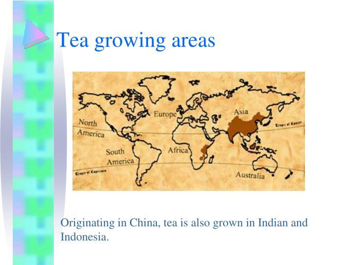Tea growing areas