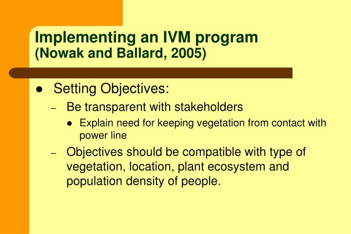 Implementing an IVM program
